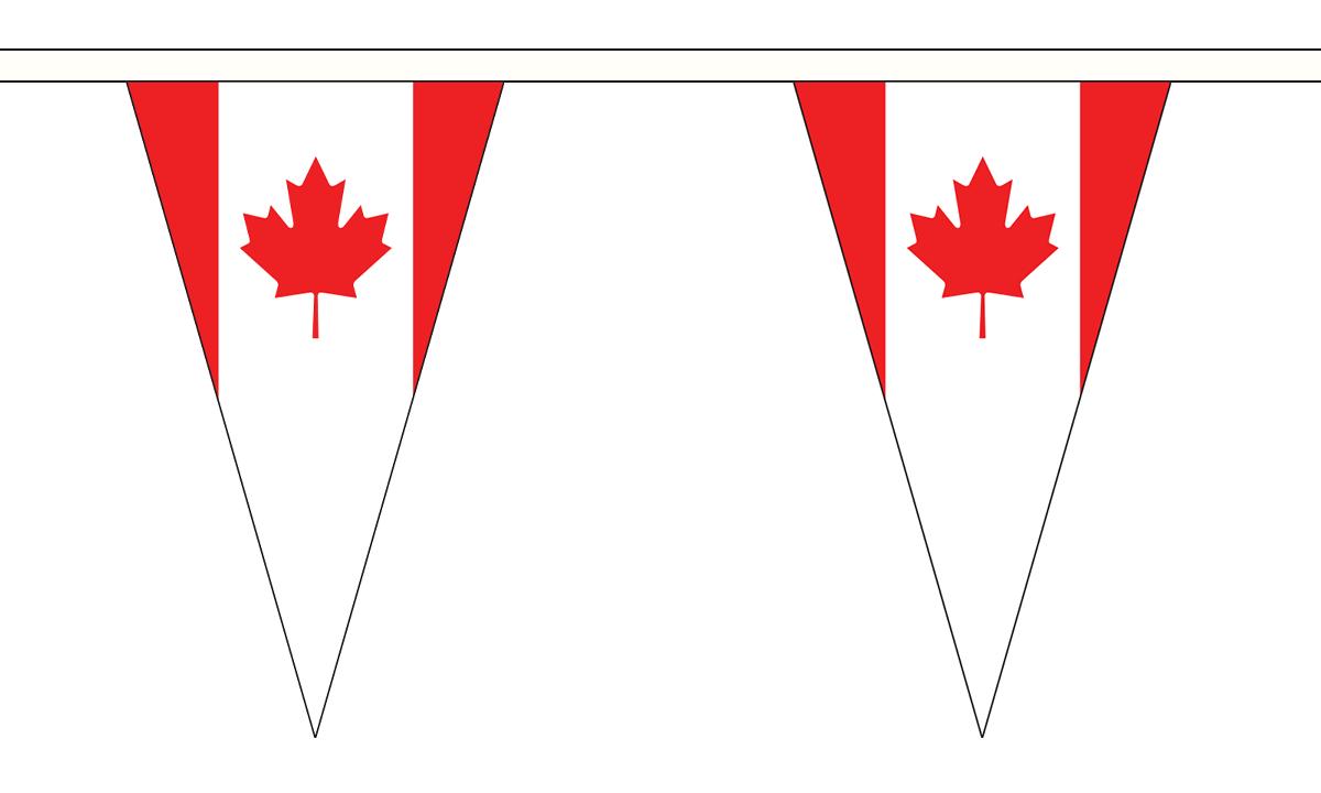 Triangular Belgium 5M Triangle Flag Bunting 12 Flags