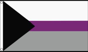 demisexual flag