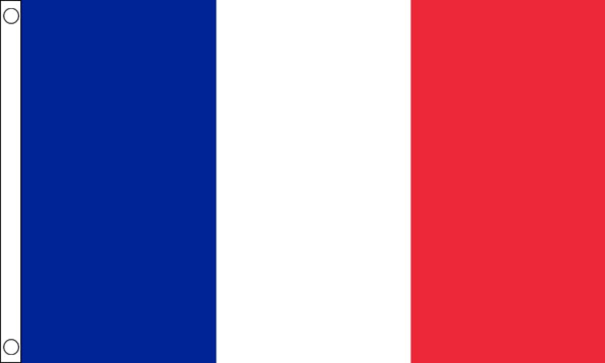 France Flag (Medium) - MrFlag