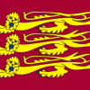 England Lions Outdoor Quality Flag