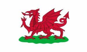 Wales 1807-1953 Flag