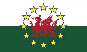 MrFlag – Call 01792 650044 to buy flags