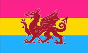 Ddraig Goch Flag