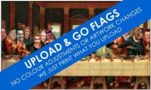 Go Custom Flags