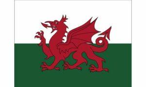 Wales Parade Flag
