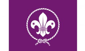 World Scouting Parade Flag