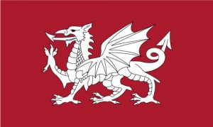 st edmunds flag white dragon