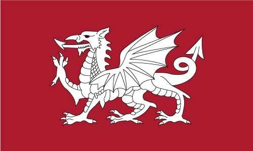 st edmunds flag white dragon